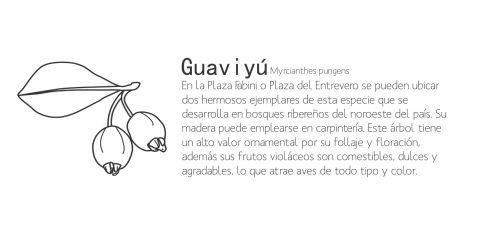 Guaviyu