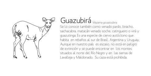 guazubirá